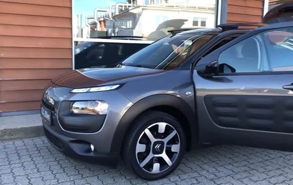 Citroën C4 Cactus 1,6 BlueHDi 100 SkyLine Van